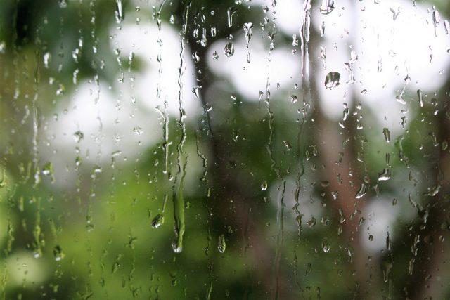 Rainy Season Coming