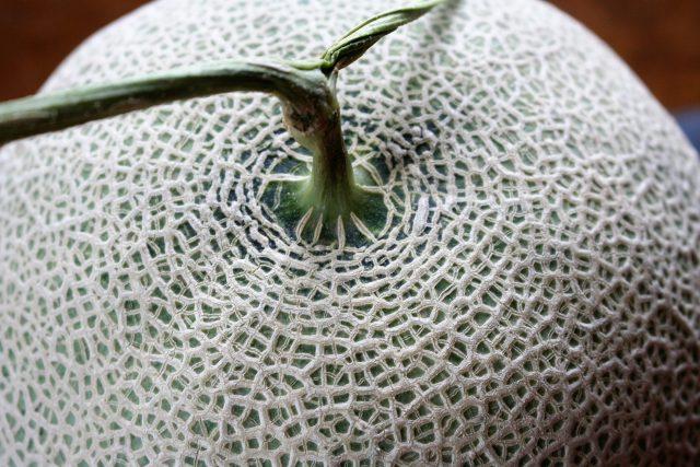 Professionally-Produced Melon